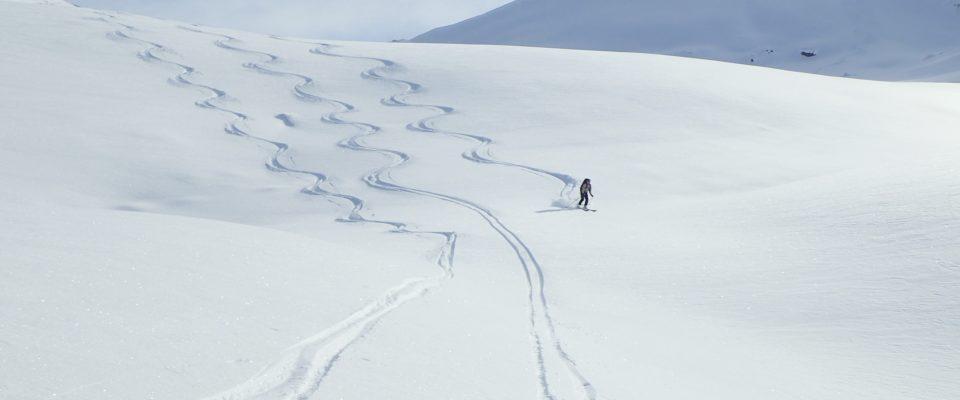 Ski de poudreuse